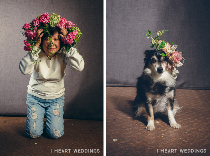 flowercrowns-dog-iheartweddings4