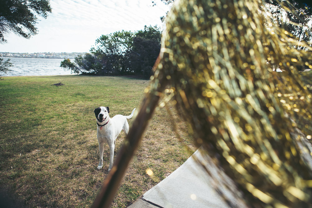 perth-elopement-jetty-quirky-photography-073